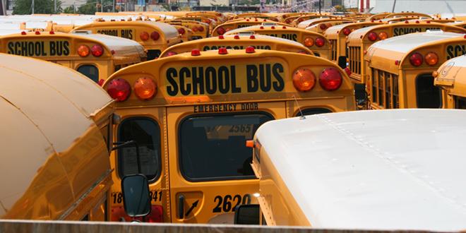 School Buses _ Jan-Erik Finnberg